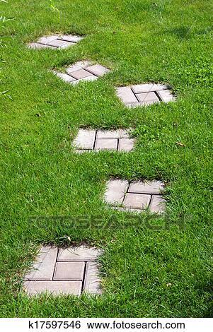 Jardin Chemin Pierre Banque De Photographies