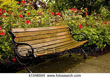 Outstanding Old Park Bench In Rose Garden Picture K1546554 Fotosearch Cjindustries Chair Design For Home Cjindustriesco