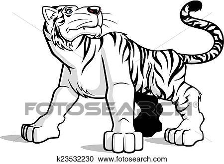 Clipart Tigre Blanc K23532230 Recherchez Des Clip Arts Des