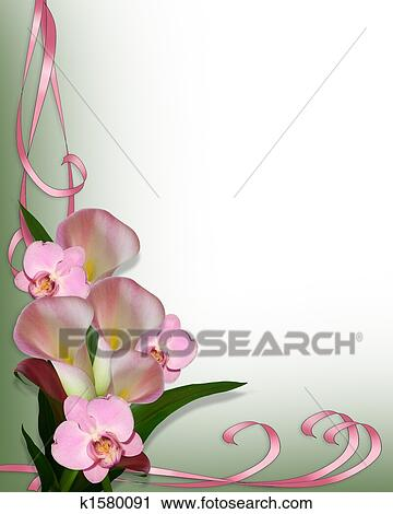 Clipart of Calla Lilies and orchids border k1580091 - Search Clip ...
