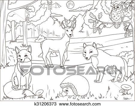 Ausmalbilder Wald Mit Karikatur Tiere Clipart K31206373