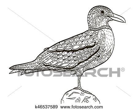 Clip Art Vogel Möwe Ausmalbilder Für Erwachsene Vektor