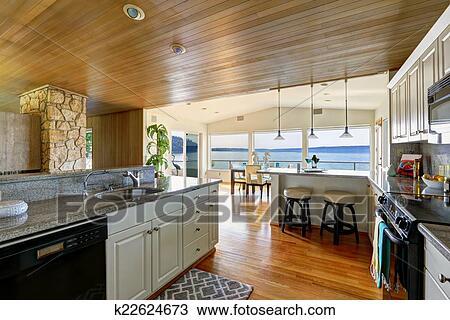 Colección de foto - cocina, área, con, paneled, techo, y, piso ...