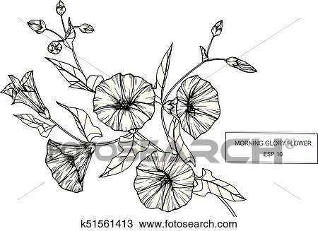 Enredadera Flower Dibujo Y Bosquejo Con Negro Y