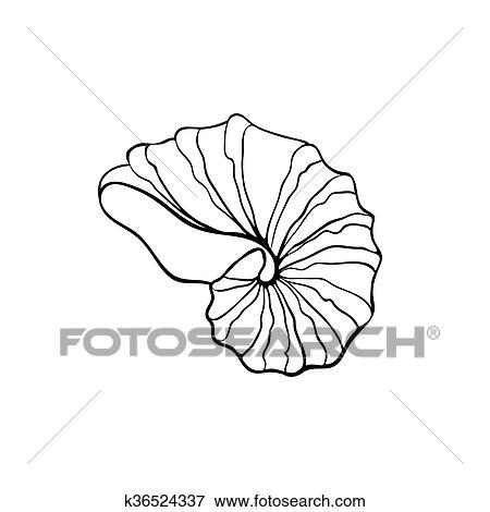 Clip Art Of Sea Shell Icon K36524337