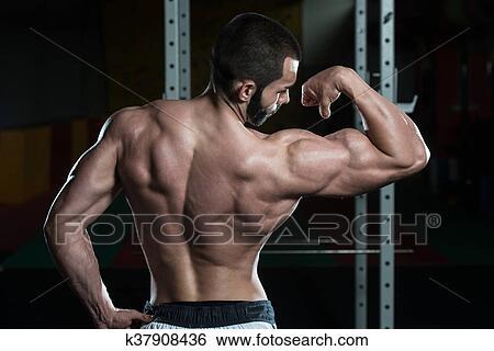 Colección de imágenes - muscular, hombre flexionar, músculos, bíceps ...