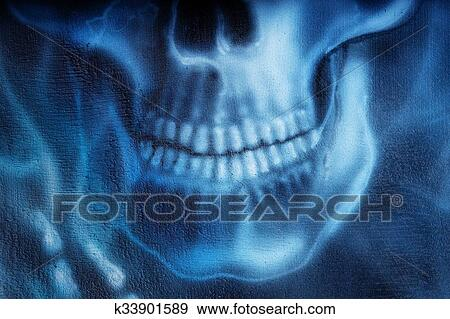 Colección de ilustraciones - detallado, cráneo, y, esqueleto, mano ...