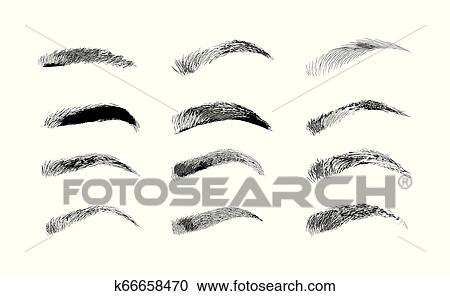 Eyebrow shapes  Various types of eyebrows  Classic type and other   Trimming  Vector illustration with different thickness of brows  Makeup  tips