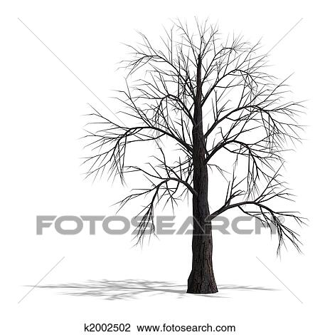 Clip Art Of 3d Render Of A Dead Tree Without Leafs K2002502