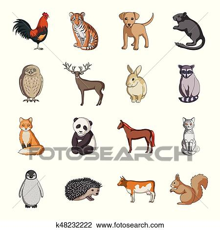 deer tiger cow cat rooster owl and other animal