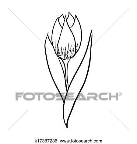 clip art of tulip sketch k17387236 search clipart illustration