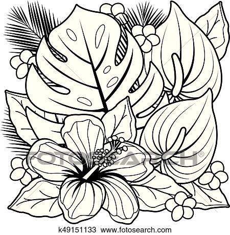 Tropical Plants And Hibiscus Flowers Vector Black And White Coloring Page Clipart K49151133 Fotosearch