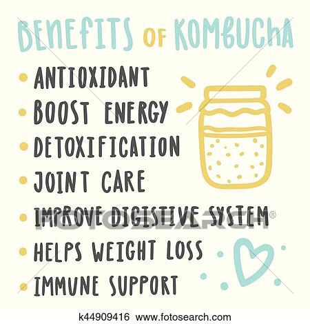 Beneficios da kombucha para saude