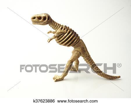 Dinosaurier-Knochen Schreiben Sie das beste Dating-Profil