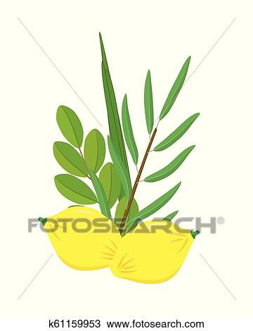 Fresh Date Palm Fruit Isolated On White Stock Image - Image of diet,  natural: 144633717