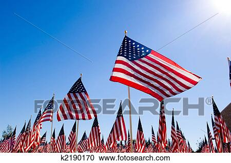 Stock Photography Of American Flag Display In Honor Of Veterans Day