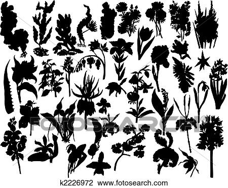 Clipart - berries and flowers silhouettes. Fotosearch - Search Clip Art, Illustration Murals,