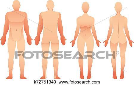 Silhuetas De Homem Mulher Frente E Costas Vista Vetorial