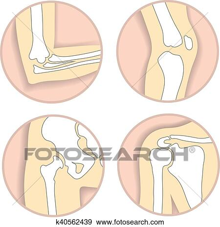Clip Art of Set of human joints, elbow, knee joint, hip and shoulder ...