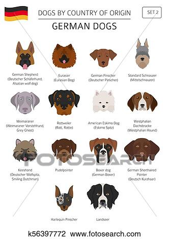 Dogs by country of origin. German dog breeds. Infographic ...
