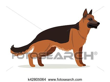Pastore tedesco o alsaziano lupo cane isolated clipart