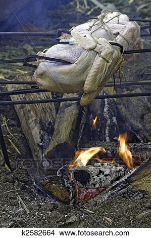 stock photo of turkeys roasting over an open fire vertical k2582664