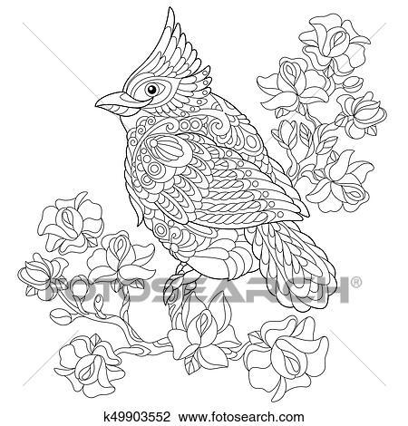 Zentangle stylized cardinal bird Clipart | k49903552 ...