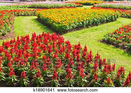 Clipart: tiny flowers   Flowers Clip art — Stock Vector © bilhagolan  #83053808