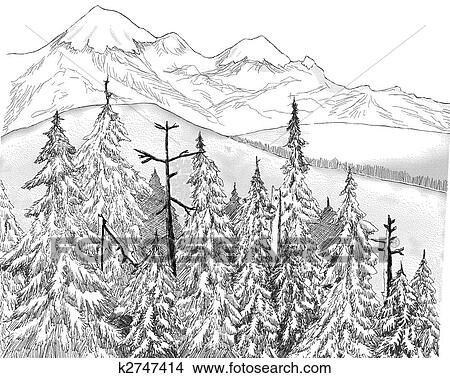 drawings of fir forest k2747414 search clip art illustrations  drawing fir forest fotosearch search clip art illustrations wall posters and