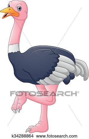 Mignon autruche dessin anim clipart k34288864 - Autruche dessin ...