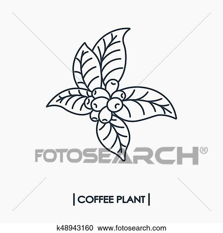 Clipart Of Line Icon Coffee Plant K48943160 Search Clip Art