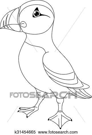 Sea Bird Atlantic Puffin On White Background