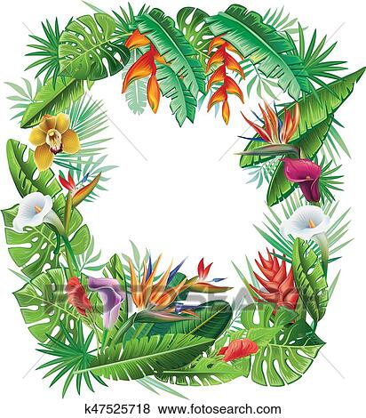 Frame from tropical plants and flowers Clip Art ...