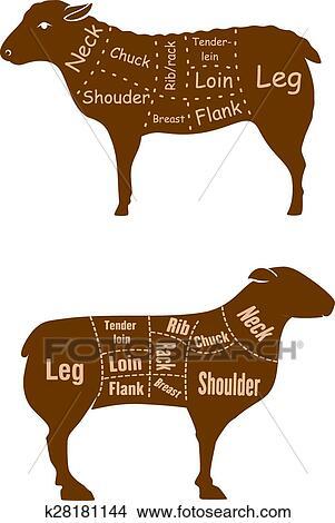 Clipart - lamm, oder, hammelfleisch, fleischhauer, schnitte ...