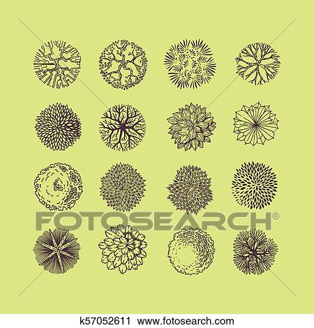 Trees Top View Different Plants And Trees Vector Set For