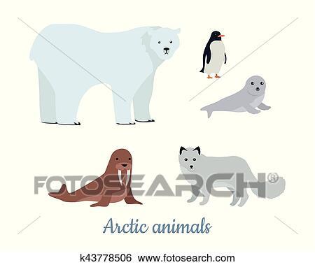 Clip Art - conjunto, de, ártico, animales, ilustraciones, en, plano ...