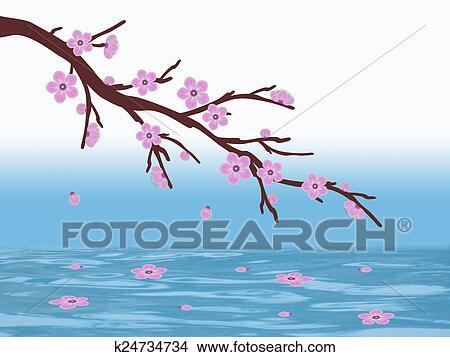 Dibujos Sakura Flor De Cerezo Y Agua K24734734 Buscar Clip