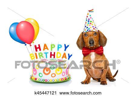 Popolare Archivio fotografico - buon compleanno, cane k45447121 - Cerca  LW96