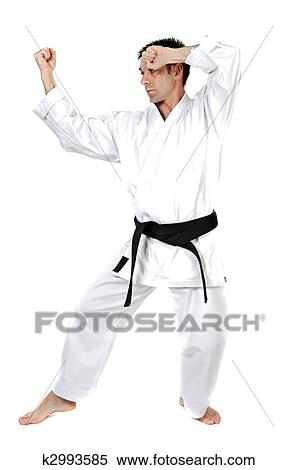 Martial Arts Stance Stock Photography K2993585 Fotosearch