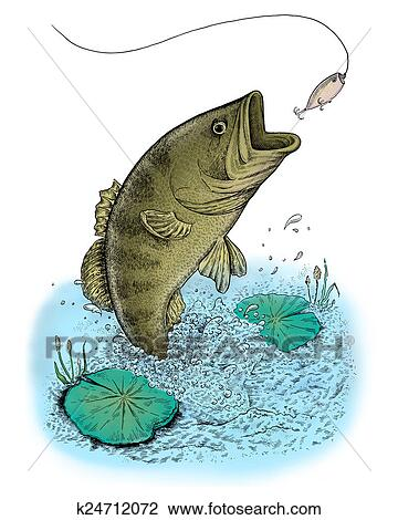 clip art of largemouth bass jumping out of water k24712072 search rh fotosearch com Largemouth Bass Wallpaper Largemouth Bass Silhouette