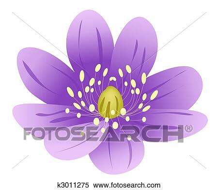 Purple Lotus Flower Stock Illustration K3011275 Fotosearch