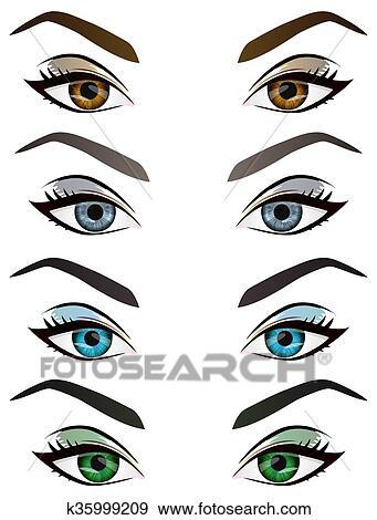clip art of set of realistic cartoon vector female eyes and eyebrows rh fotosearch com vector eye silhouette vector eyeball