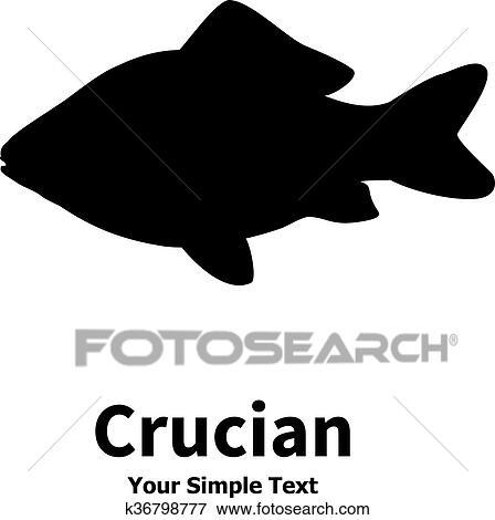 Klipart Vektor Ilustrace Silueta O Crucian Kapr K36798777