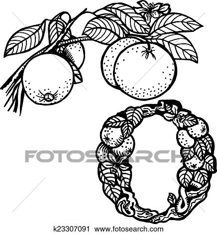 Clipart Of Orange Branch Litera O K23307091
