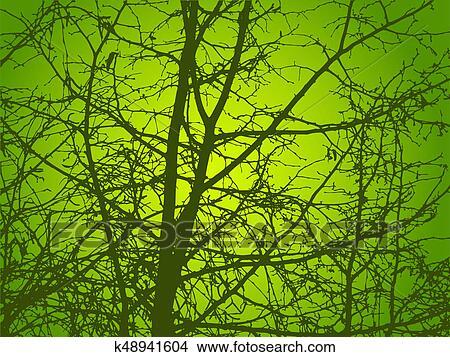 Dibujos - ramas, de, árboles, como, rayas, de, leaf. k48941604 ...