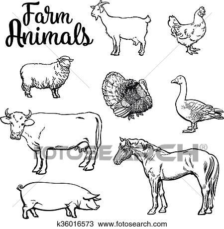 Clipart Set Di Animali Fattoria Su Il Sfondo Bianco K36016573