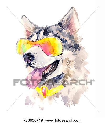 水彩画 シベリアンハスキー 犬 中に 涼しい サングラス イラスト