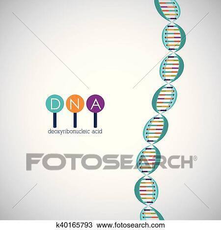 Adn Estructura Cromosoma Diseño Clipart