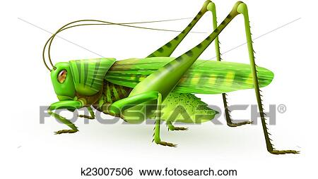 Grasshopper Clipart Black And White | Clipart Panda - Free Clipart ... |  Insect coloring pages, Free clip art, Nouns and adjectives