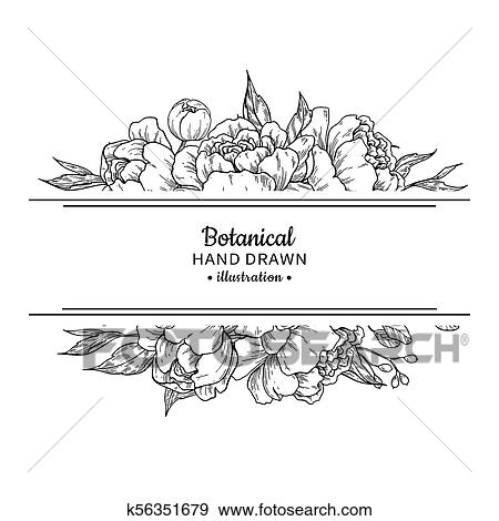 Clip Art Of Flower Vintage Border Vector Peony And Roses Botanical